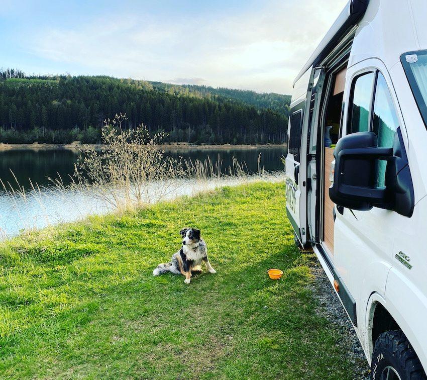 Camping mit Hund Kastenwagen Wohnmobil Campingbus Vanlife Wildcamping Soboth Österreich Stausee Australian Shepherd