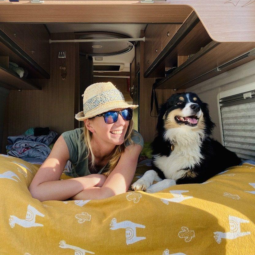 Camping mit Hund Kastenwagen Wohnmobil Vanlife Australian Shepherd