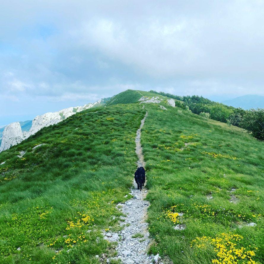 Ljubičko brdo Wandern mit Hund Velebit Gebirge Kroatien