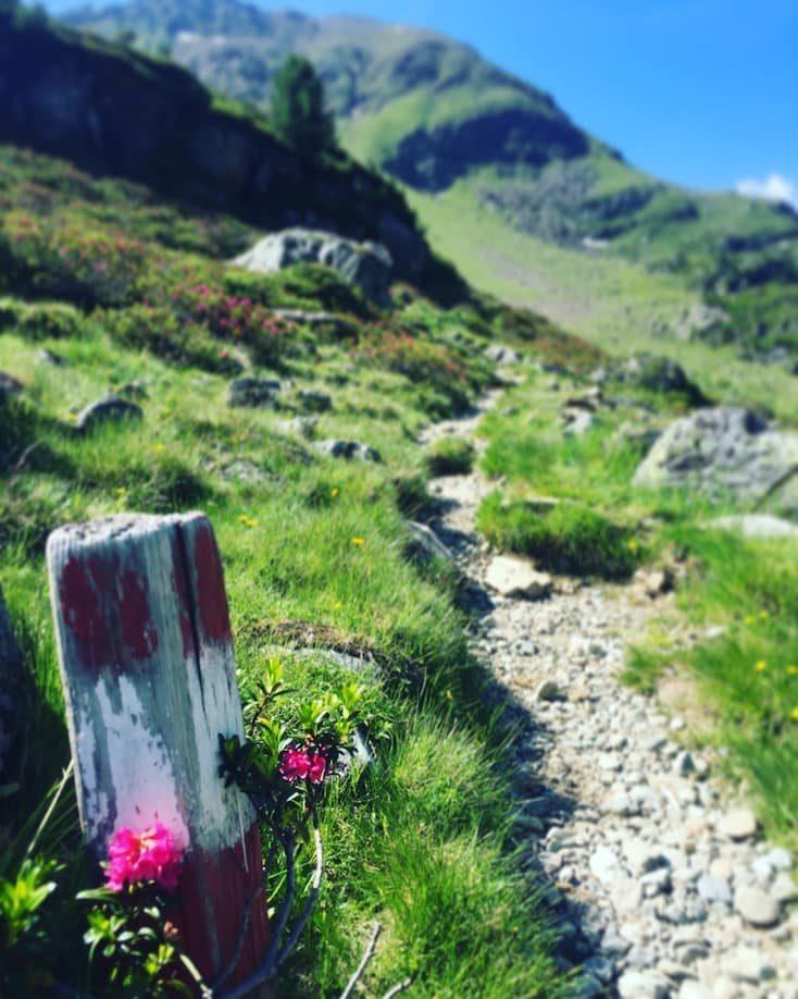 Wanderung Weißsee Hund Camping Tirol