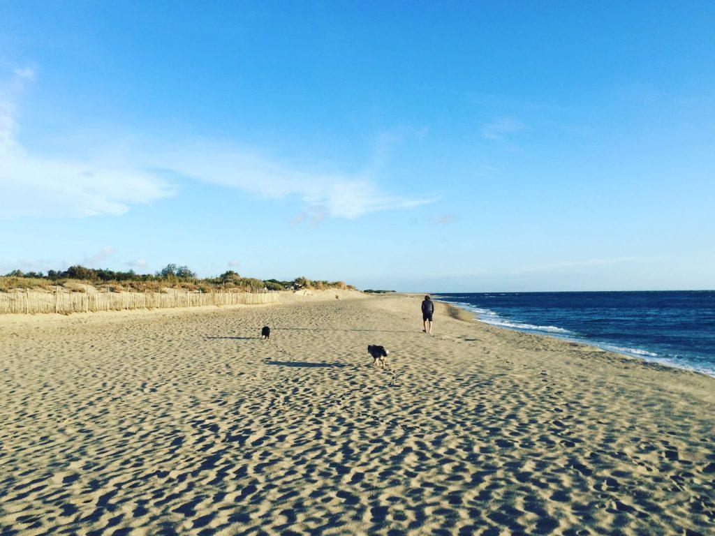 Languedoc-Roussillon Okzitanien Le Brasilia Frankreich Südfrankeich Mittelmeer Reisen mit Hund Camping Urlaub