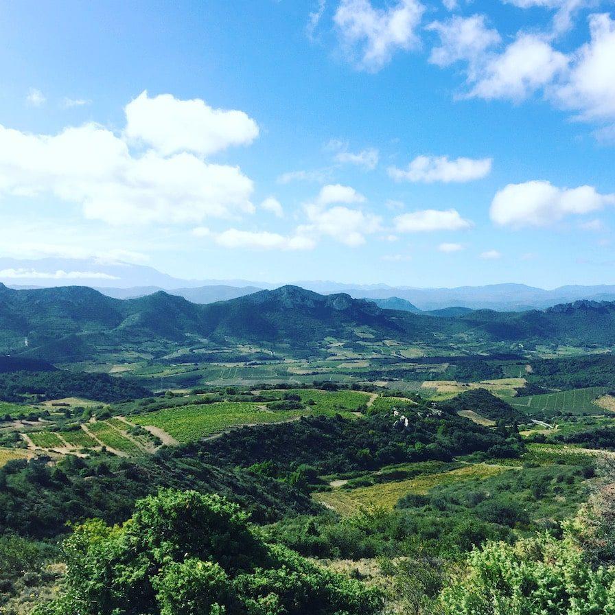 Languedoc-Roussillon Wein Maury Aude Südfrankreich Frankreich-Urlaub Wohnmobil Camping-Reise