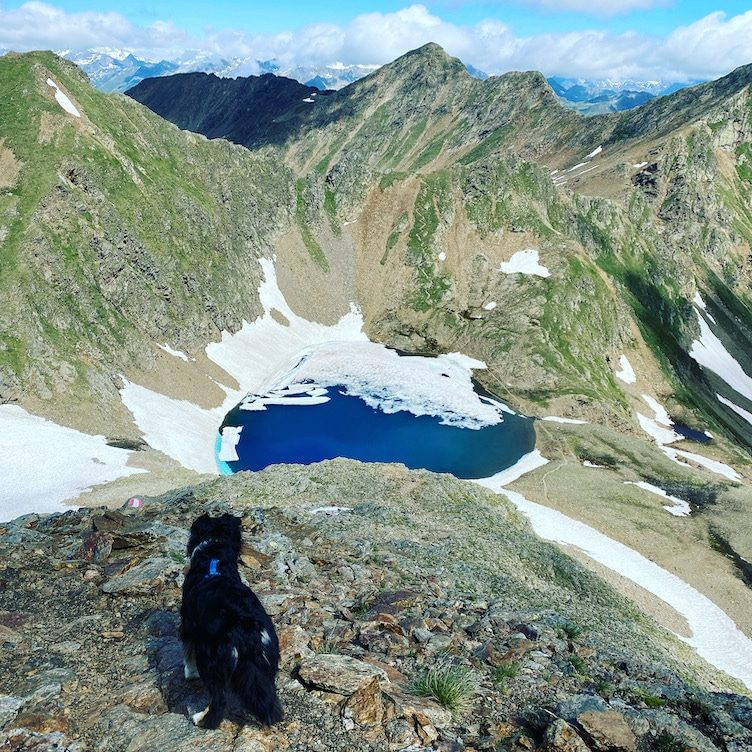 Osttirol Degenhorn Degenhornsee Wandern mit Hund Villgratental Villgratner Berge Hohe Tauern