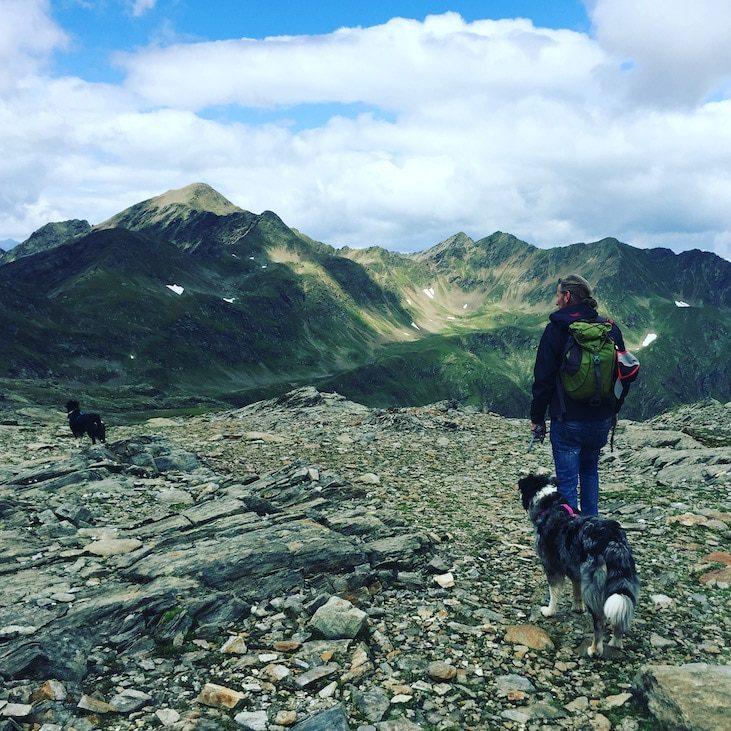 Wandern mit Hund Hohe Tauern Hochgrabe Villgratental Winkeltal