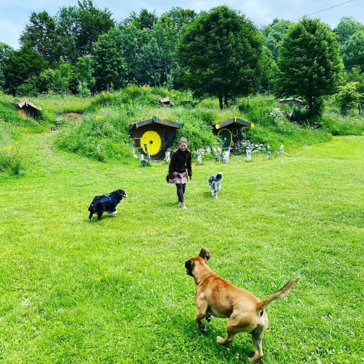 Kamp Velebit Kroatien Camping mit Hund hundefreundlich