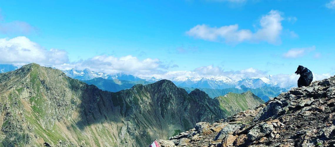 wandern mit hund in Osttirol hohe Tauen großes Degenhorn Winkeltal Australian Shepherd