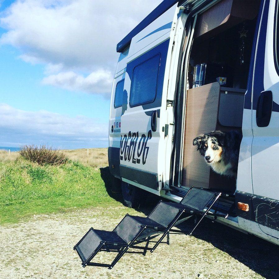 Hunderampe Wohnmobil Einstiegshilfe Camping mit Hund Kastenwagen Wohnmobil Zubehör