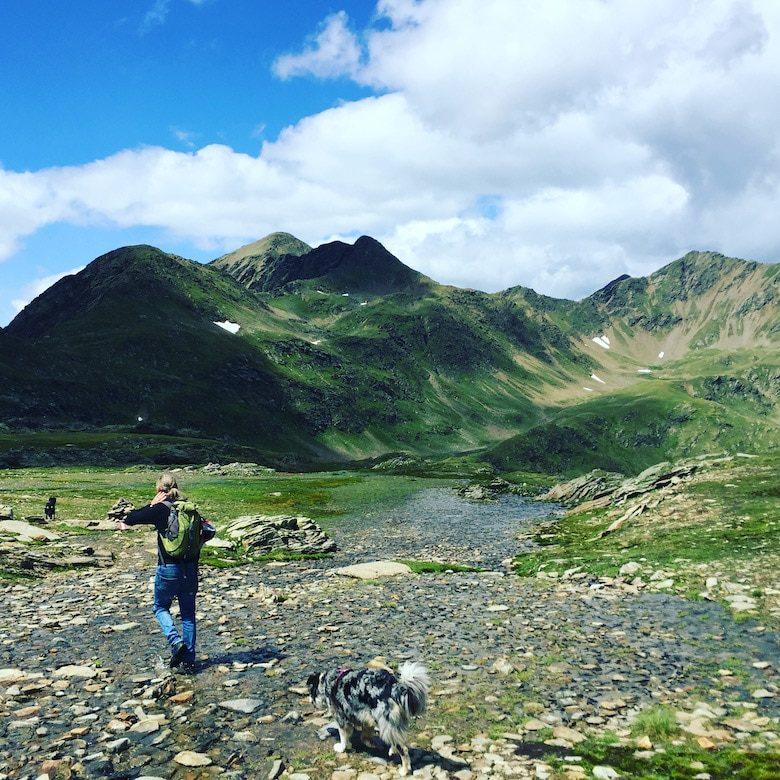 Wandern mit Hund Villgratental Winkeltal Hochgrabe Hohe Tauern