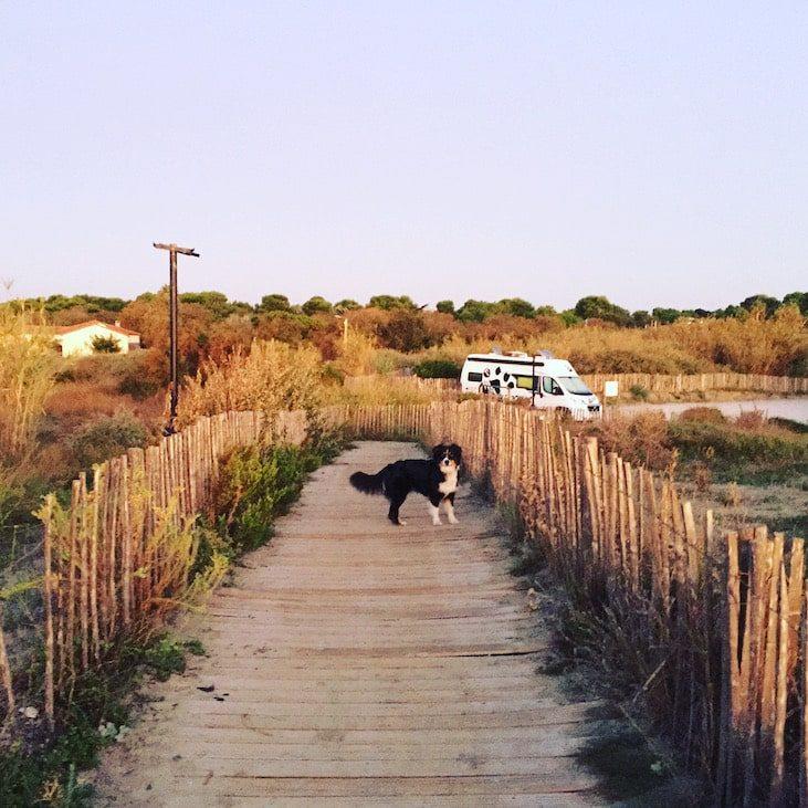 Languedoc Roussillon Wildcamping camping mit Hund Kastenwagen Wohnmobilurlaub Rundreise Südfrankreich Mittelmeer