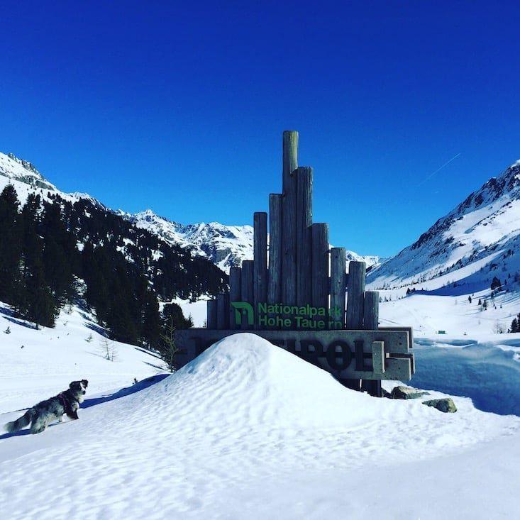 Osttirol Defreggental Staller Sattel Wintercamping Schneeschuhwandern Hund
