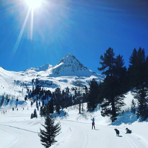 Osttirol Staller Sattel Defreggental Schneeschuhwandern Wintercamping Hund