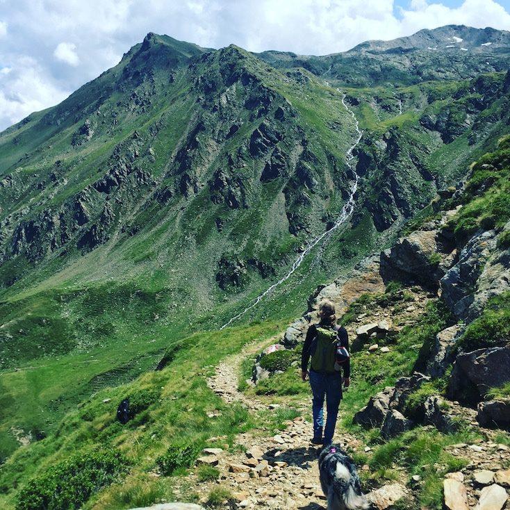 Wandern mit Hund in Osttirol Winkeltal Villgratental Hochgrabe Hohe Tauern