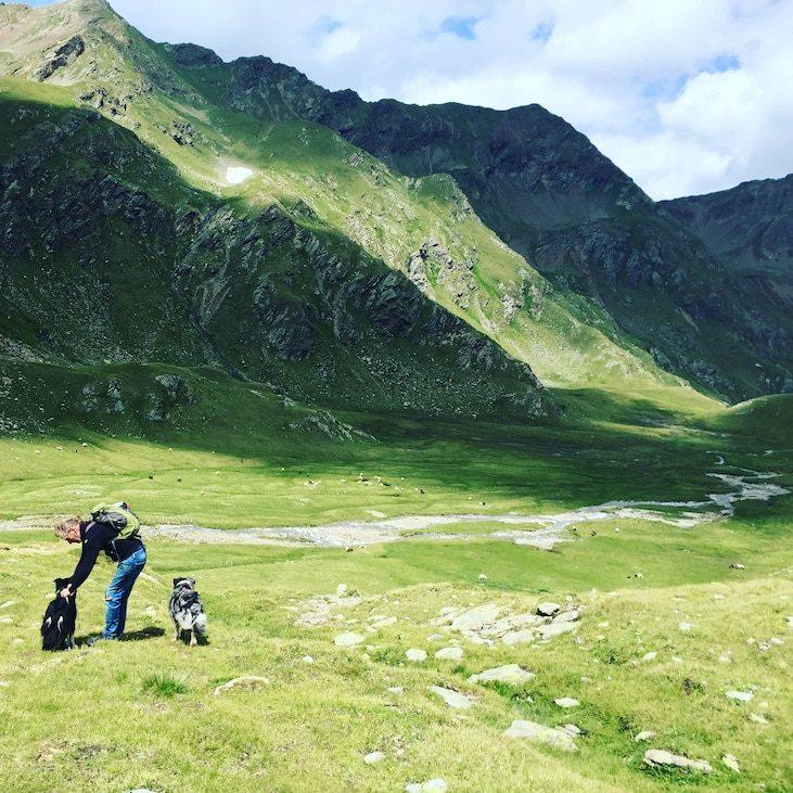 Wandern mit Hund Villgratental Leinenpflicht Hohe Tauern