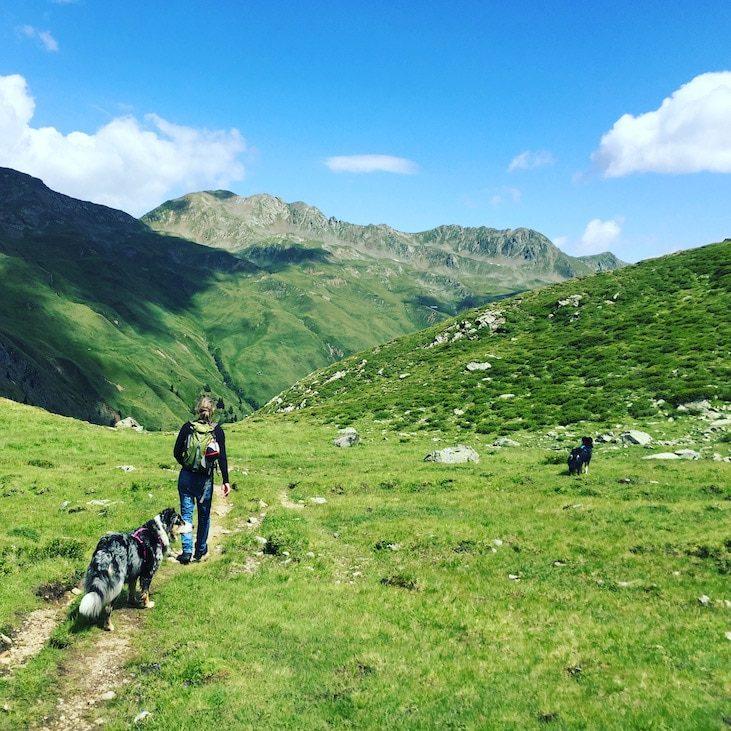 Wandern mit Hund Osttirol Hohe Tauern Österreich