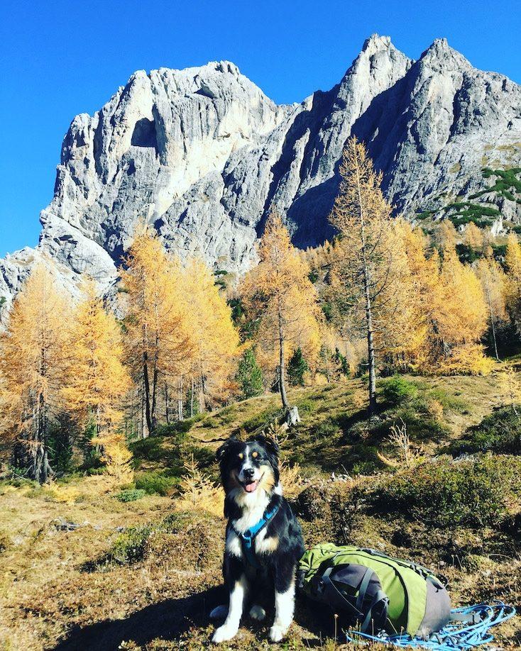 Wandern mit Hund in Osttirol Lienzer Dolomiten Tristach Karlsbader Hütte