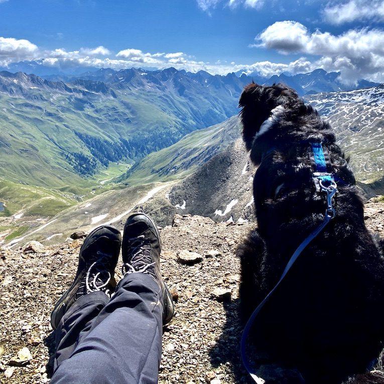 Großes Degenhorn wandern mit Hund Osttirol Hoher Tauern Australian Shepherd Gipfeltour