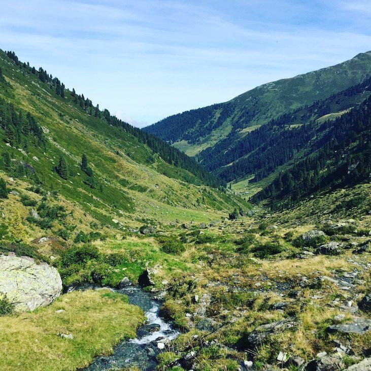 Frommtal Frommbach Frommalm Kelchsau Wanderung HUnd Sommer Brixental Langer Grund Tirol