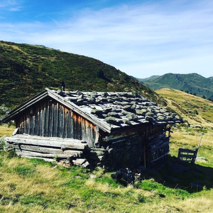 Jagglfeldalm Kelchsau Langer Grund Brixental Wanderung mit Hund unterwegs Tirol Bergtour