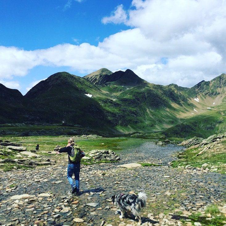 Wandern mit Hund Camping mit Hund  Osttirol Österreich