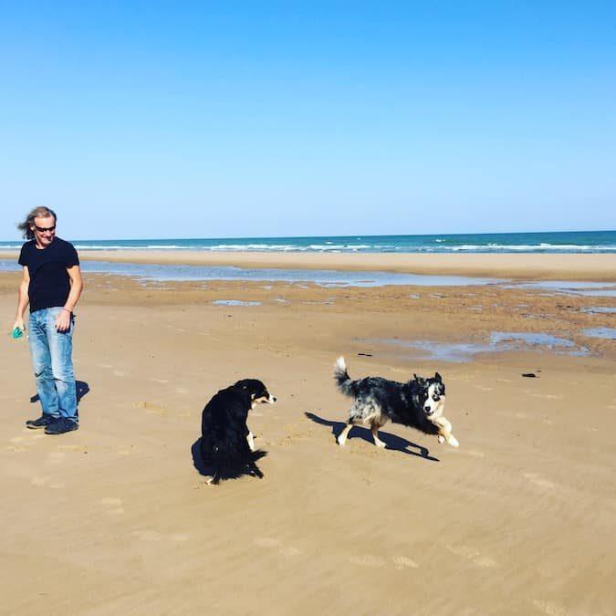 Normandie Atlantik Hund Hundestrand Frankreich Welthundetag Hundeliebe