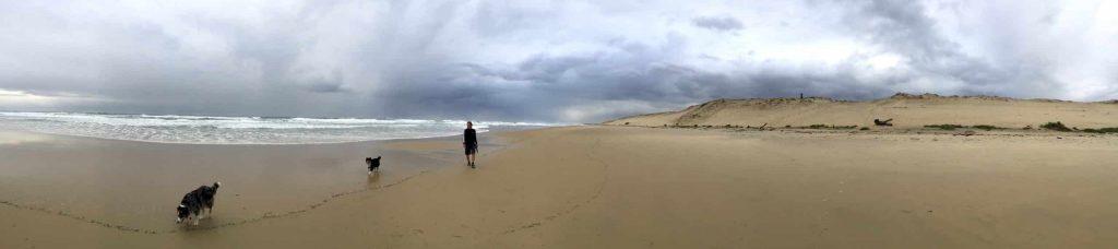 Aquitanien schönster Ort Reisen Wohnmobil Camping mit Hund Frankreich Atlantik Hundestrand