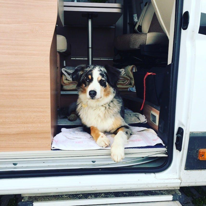 Umbrien wandern Hund Wohnmobil hundetauglich Italien