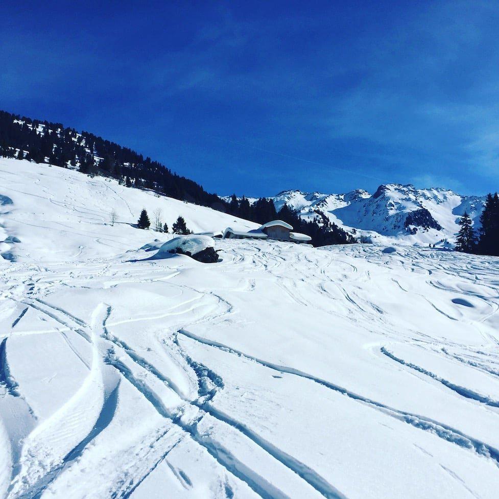 Wintercamping hund Kitzbüheler Alpen