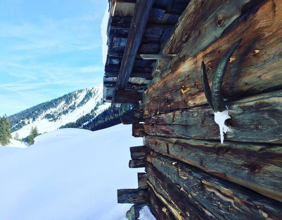 Langer Grund Kelchsau Wintercamping Schneeschuhe Hund