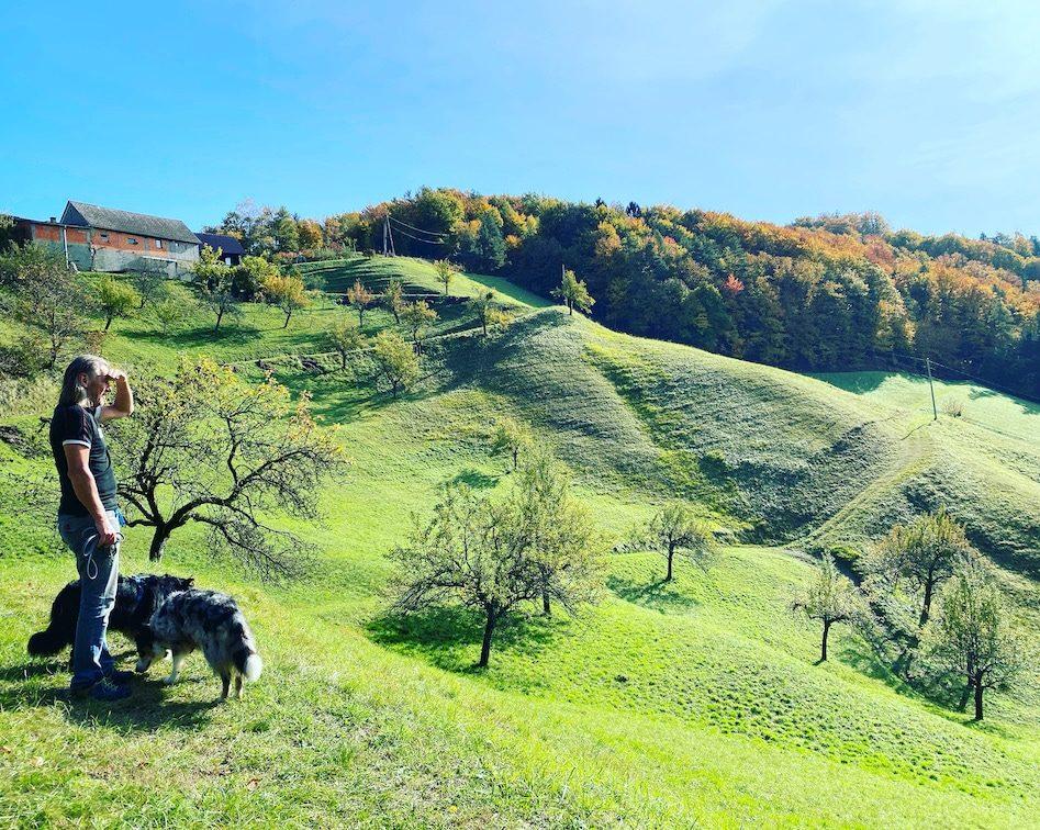 Südsteiermark Weinstraße Camping Wandern mit Hund Herbst Österreich