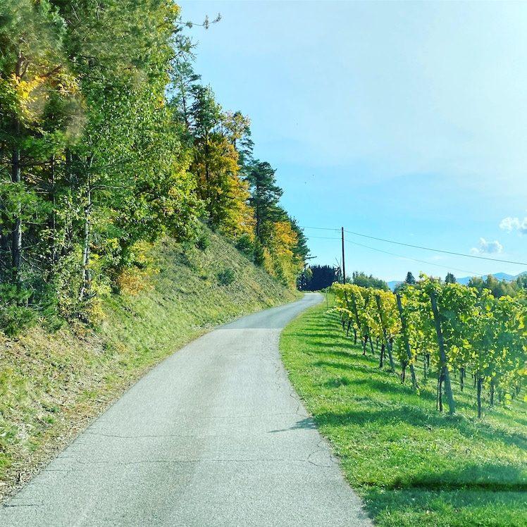Südsteiermark Panoramastraßen Weinstraße Roadtrip Rundreise Wohnmobil Campingbus Herbst