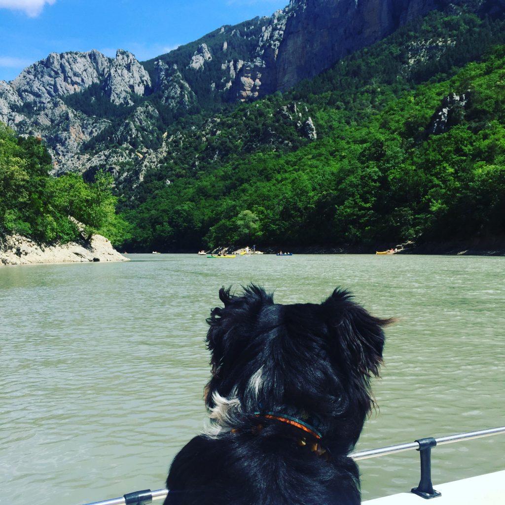 Verdonschlucht Gorges du Verdon unterwegs mit Hund Australian shepherd Tretboot Lac de Sainte Croix