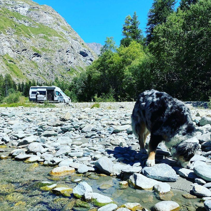 Optimismus Camping mit Hund Roadtrip Frankreich Alpen Kastenwagen Wildcamping