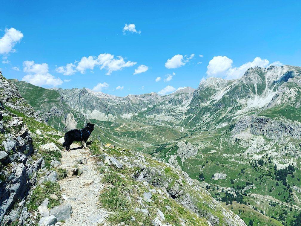 Reisen während Corona Wandern mit Hund Roadtrip Valle Maira Piemont Sentiero Dino Icardi Alpen