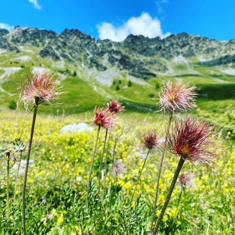 Alpen Jahresrückblick Corona Reisebeschränkungen Italien