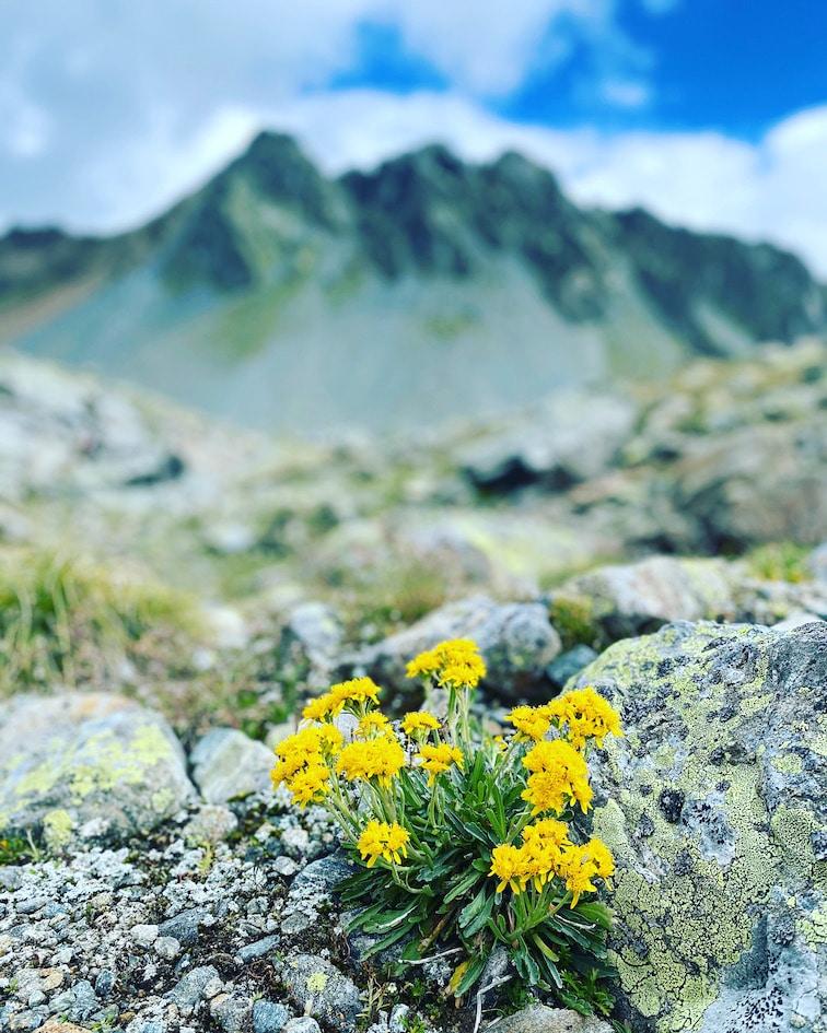 Kaunertal Alpen Wandern Österreich Tirol