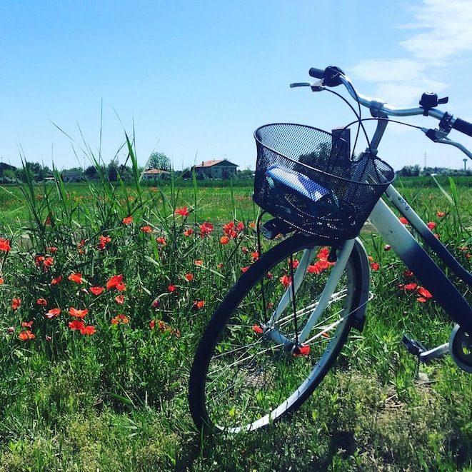Fahrrad Fahrradverleih Cavallino
