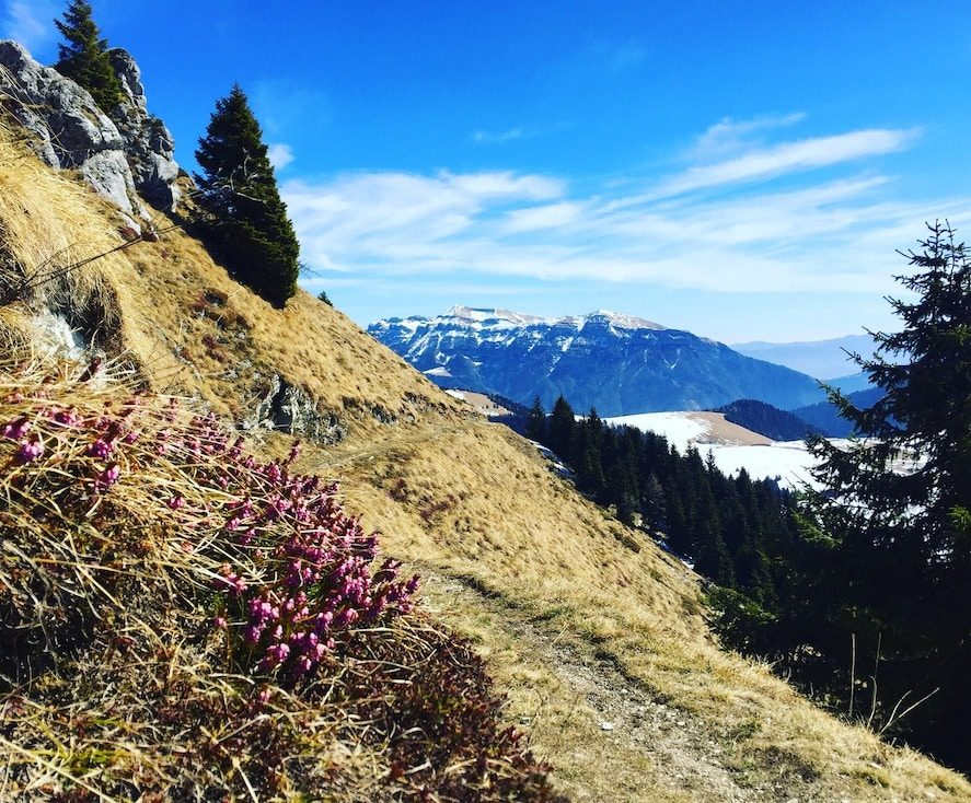 Passo Brecon Trentino Wanderung Hund Camping Lagorai