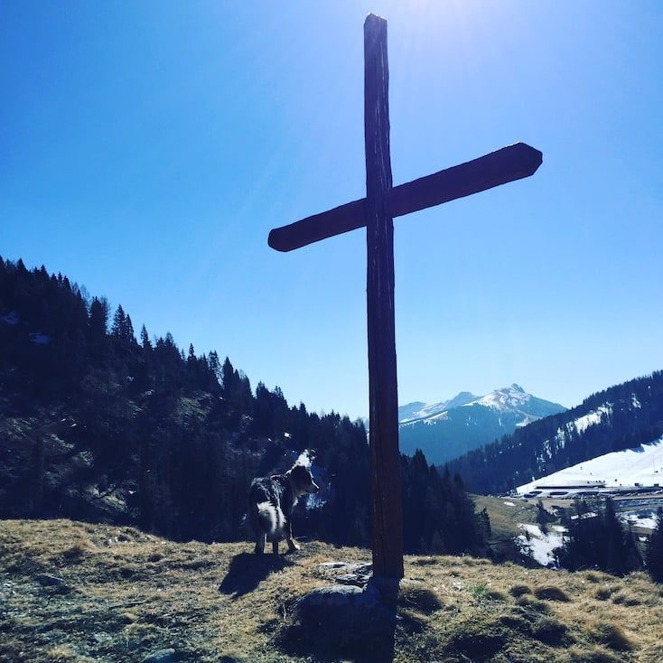 Passo Brocon Lagorai Monte Timoncello Trentino Hund wohnmobil camping wandern